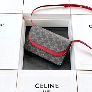 celine wallet on strap in triomphe canvas and lambskin